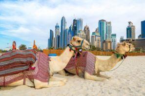 ОАЭ Объединённые Арабские Эмираты